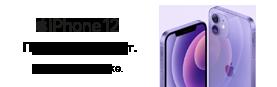 Скоро в продаже: iPhone 12 фиолетового цвета!